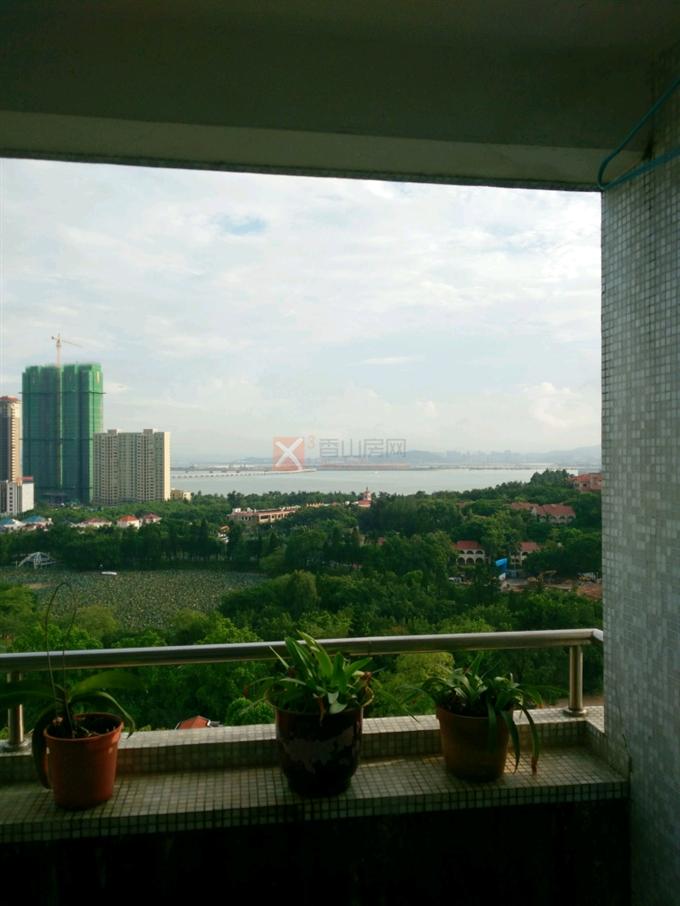 海珠大厦相片