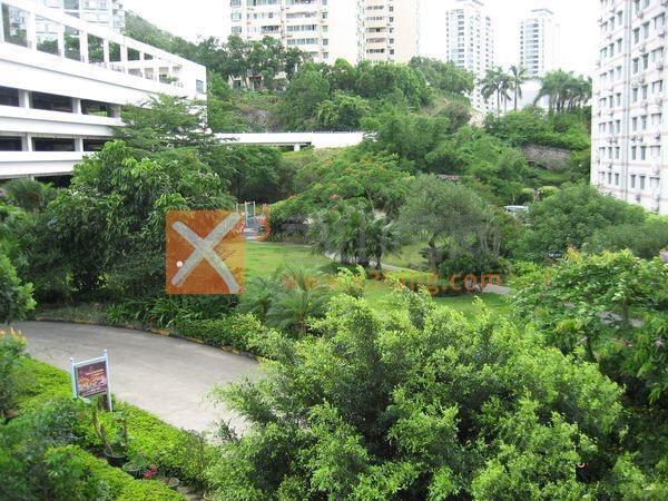 华景花园群芳阁相片