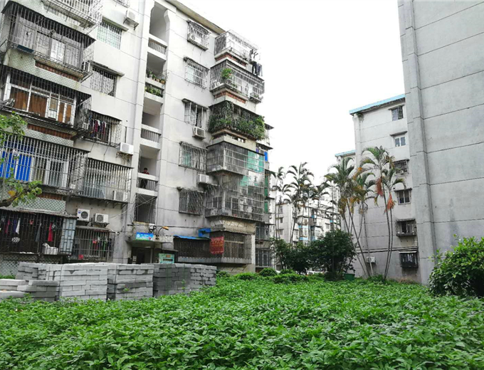 吉莲新村相片